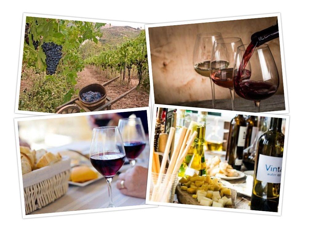 collage Wijnproeverij op Locatie