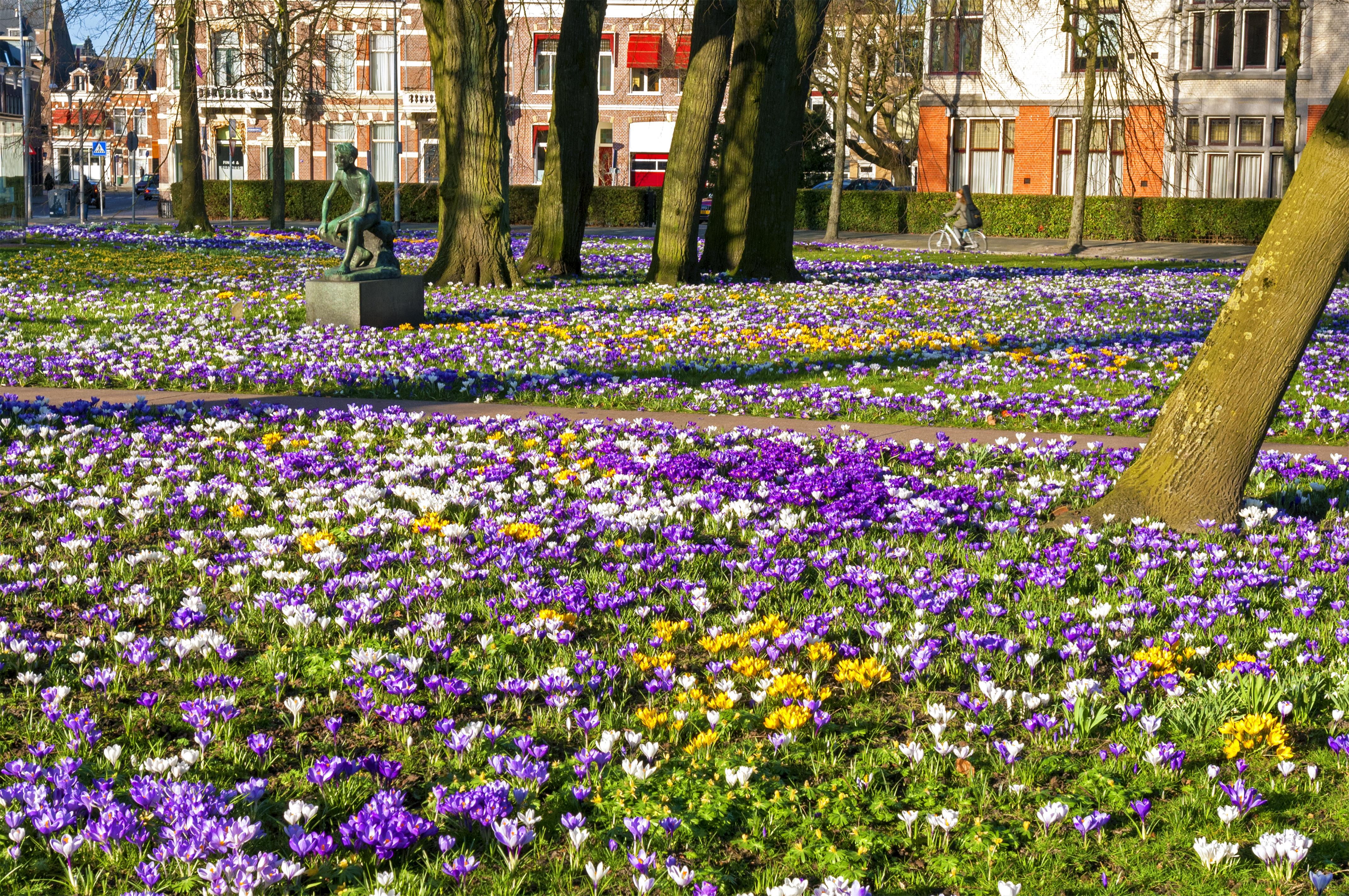 Groningen lente